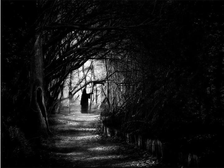 grim-reaper-woods